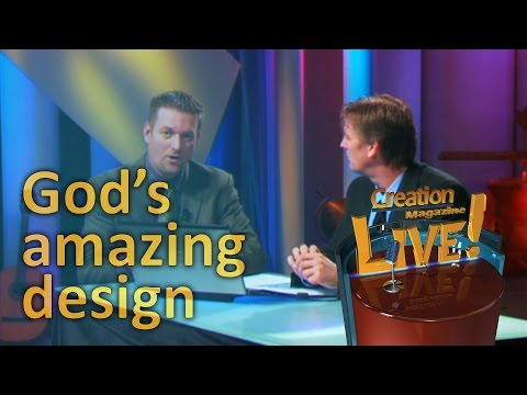 God's amazing design — Creation Magazine LIVE! (2-06)
