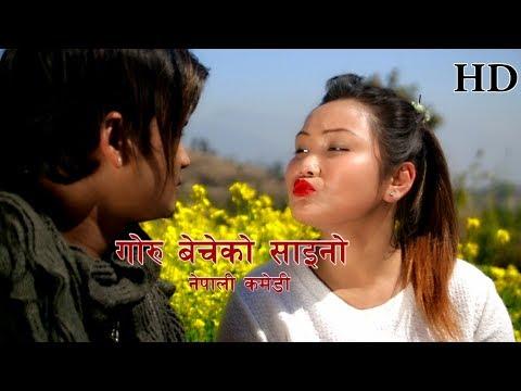 (Nepali Comedy Goru Bacheko Saino ... 16 minutes.)