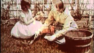 Spring Suburbs, 1950's - Film 6158