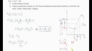 Umh1262 2012-13 Lec009 EJERCICIO 11 Tema 6 Competencia Perfecta
