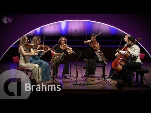 Brahms: String Sextet No. 2, Op. 36 - Harriet Krijgh & Friends - Live HD