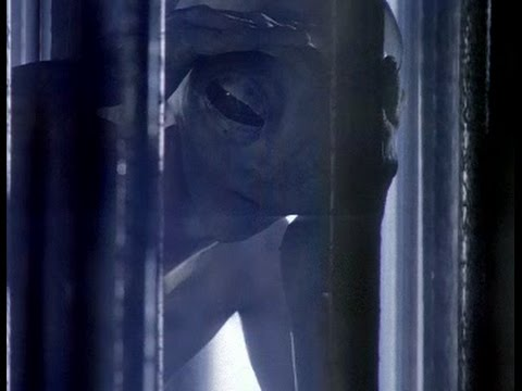 Alien Abduction .. (X Files S3E20 Clip)