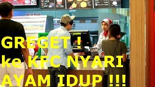 Video GILA! KE KFC NYARI AYAM IDUP !!!! -prank indonesia MP3, 3GP, MP4, WEBM, AVI, FLV Juli 2017