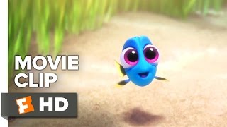Finding Dory (Movie CLIP) - Baby Dory
