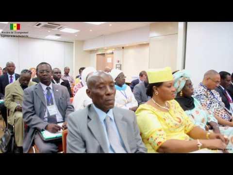 Consultation Régionale sur la mobilisation des Investissements Directs Étrangers Pr Mary Teuw NIANE