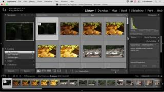 After you have imported and organized your images, the next step is to edit the images in Lightroom. In this tutorial, expert trainer Andy Anderson will teach you how to edit your images using the editing tools in Lightroom.