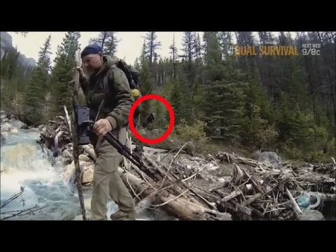 Bigfoot Caught on tape as seen on Survivorman 2015