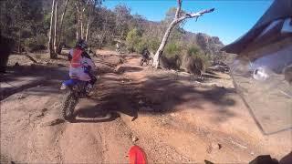8. 2019 CRF250F trail riding