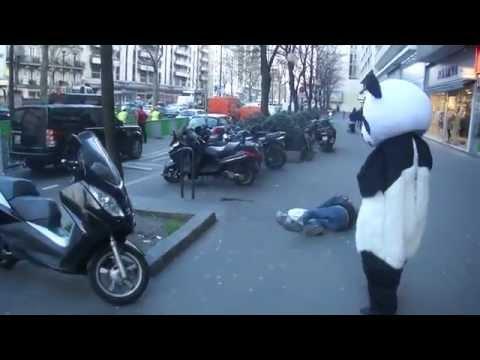 En panda på stadsvandring