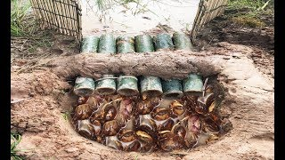 Video Wow! Smart Man Catch A Lot Of Crabs By Creative Deep Hole Crab Trap Using 6 Bamboo MP3, 3GP, MP4, WEBM, AVI, FLV Februari 2019
