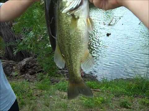 Bass Fishing Private Ponds Day 2
