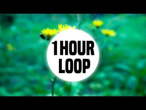 Video Nearly 2 hour loop, you reposted in the wrong swamp download in MP3, 3GP, MP4, WEBM, AVI, FLV January 2017