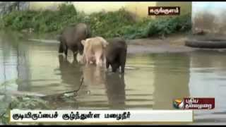 Stagnant rain water causes havoc to the residents of Indira Nagar in Ramanathapuram