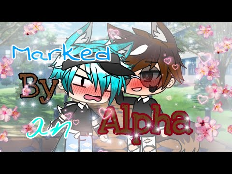 Marked By An Alpha part 1 || Gacha life series||Gay love story||
