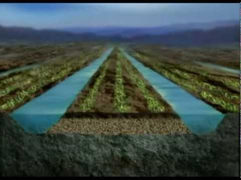 Tiwanaku Tiahuanaco. Origen de un sistema de agricultura 1° (Bolivia)
