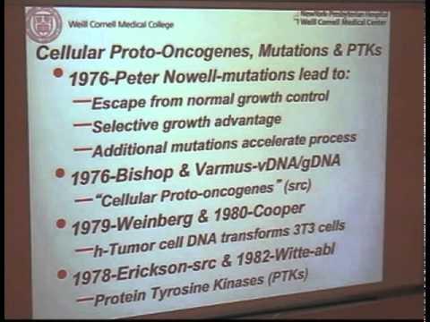 Die quantalle Theorie der Immunität: Implikationen für die Karzinogenese
