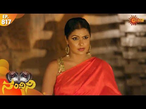 Nandini - Episode 817 | 11th Dec 19 | Udaya TV Serial | Kannada Serial