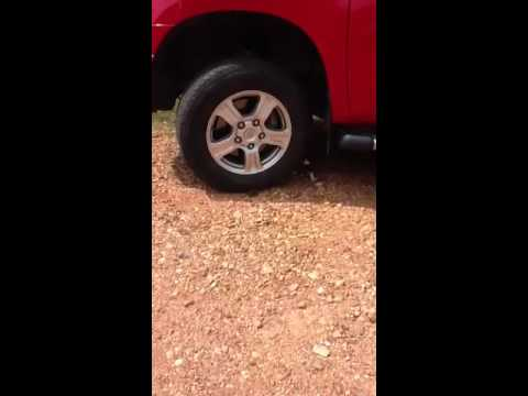 Cat Chases Mouse All Around The Tire