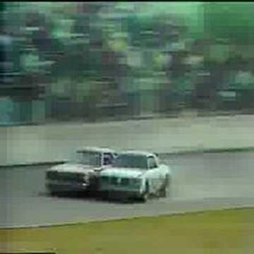 1979 Daytona 500...the fight