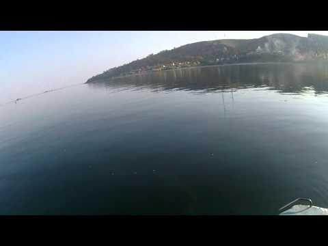 рыбалка на реке шушма