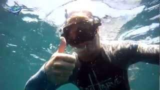 Guy Harvey's Whale Shark Encounter off Isla Mujeres