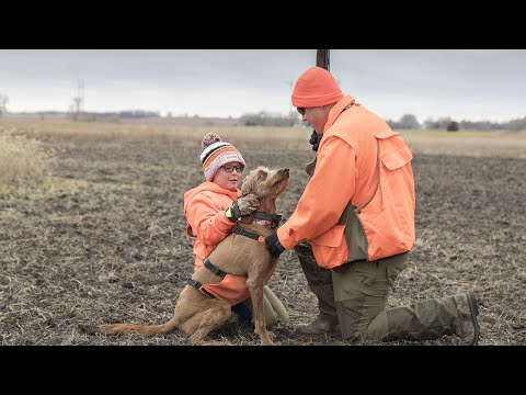 South Dakota Pheasant Hunt with a Special Father, Son & Bird Dog | The Flush: Season 10, Episode 4
