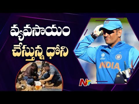 MS Dhoni Turns Into A Farmer, Shares Video of Him Doing Organic Farming