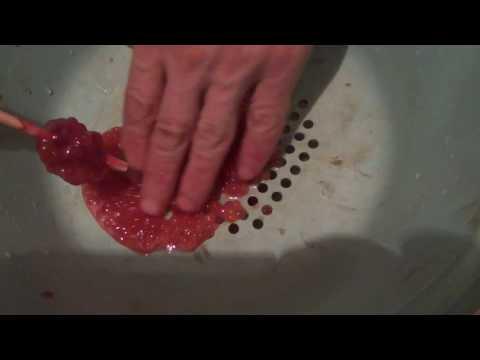 Как сделать красную икру горбуши