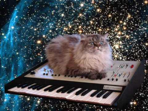 Gatto spaziale su pianola