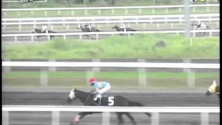 RACE 4 CHARISMATIC 08/21/2014
