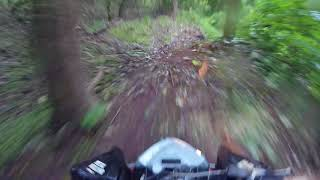 8. My First ride on my new Trail.  2006 Outlaw 500 IRS. Plus wreck!!!!!!!