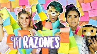 Video 99 REASONS TO LOVE THEM | VLOGS LOS POLINESIOS MP3, 3GP, MP4, WEBM, AVI, FLV Maret 2018