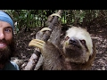 Ever Gotten A Selfie With A Sloth? This Guy Just Did! | The Wheel
