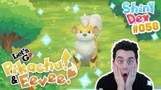 WHAT DO I DO?! SHINY GROWLITHE in POKEMON LETS GO PIKACHU AND EEVEE! by aDrive