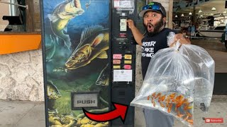 BUYING AQUARIUM Fish FROM A VENDING MACHINE! (WORLD'S FIRST)