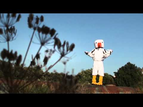 EL BOTCHO - REVENGE OF THE PELICAN
