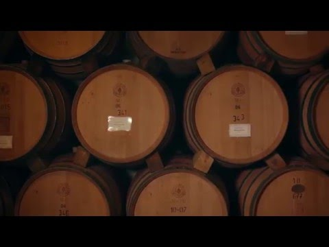 Chicago Corporate Videographer: The Winemaker - Lynfred Winery's Andres Basso
