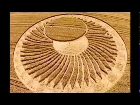 cerchi nel grano a cervia, dopo i dubbi svelato il mistero