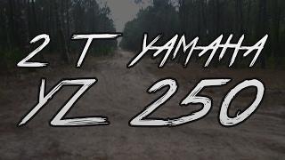 4. 2 Stroke Power - 2010 Yamaha YZ 250