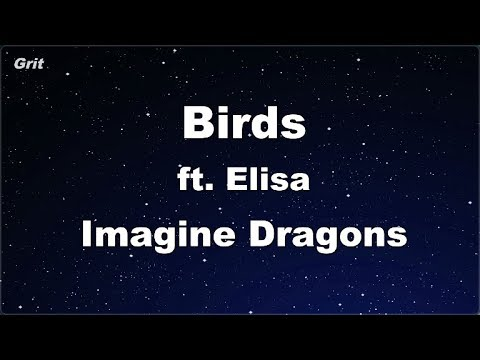 Birds Ft. Elisa - Imagine Dragons Karaoke 【No Guide Melody】 Instrumental