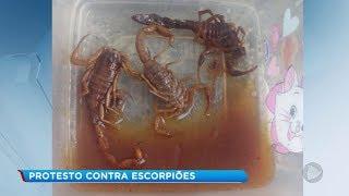 Menino de 10 anos é picado por escorpião em condomínio de Bauru