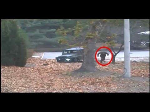 Bloß weg aus Nordkorea: UN veröffentlichen Video von Flucht eines nordkoreanischen Soldaten