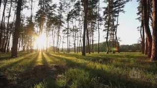 Homeward Bound - Mormon Tabernacle Choir