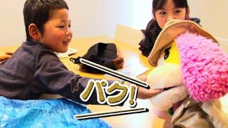 富山市PR動画『ペロリッチ調査ファイルCASE01 恐怖?!クマタローを追え!』