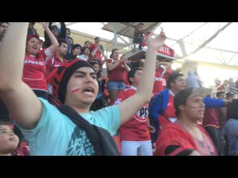 Hinchada PAPAYERA - CDLS - Los Papayeros - Deportes La Serena