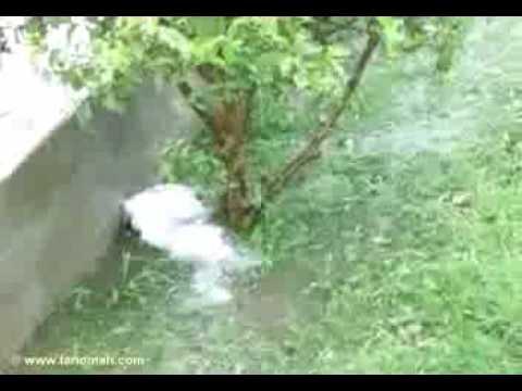 مشهد لهطول الأمطار( ولد تنومة)