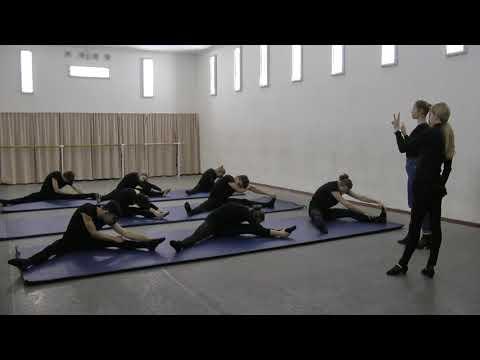 Костина А.В. Особенности организации практических занятий по танцу в сопровождении музыкального произведения с глухими студентами - актерами. Экзерсис на полу