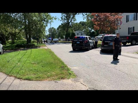 VIDEO NOW: Dogs Shot & Killed in Warwick