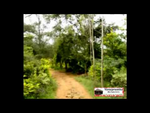 Video avVanaprastha Backpackers