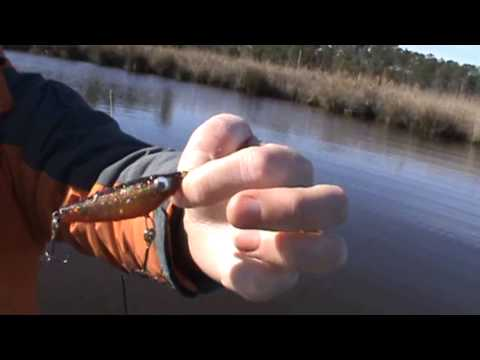 Speckle Trout Fishing in the Winter